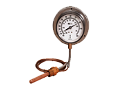 Remote Reading Thermometers