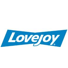 Lovejoy 6213ZZ 1 Row 2 Shield Bearing