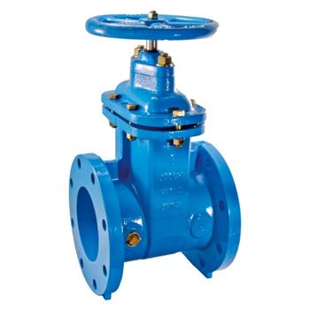 "Watts 0700108 Non-Rising Resilient Wedge Gate Valve 10"" (405-RW)"